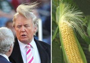 donald-trump-funny-look-alike-20__700
